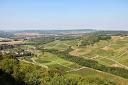 Les Vignes de Château Chalon